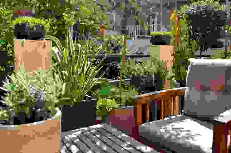 by ésverd - jardineria & paisatgisme Eclectic