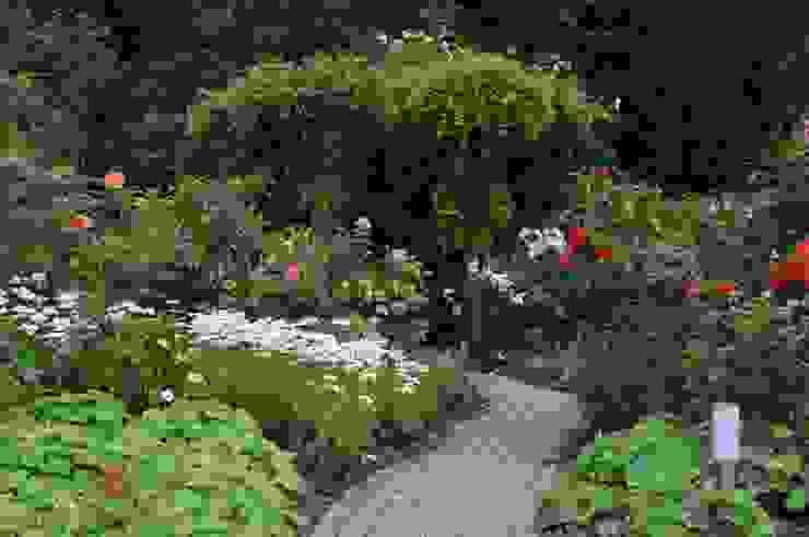 Vườn phong cách đồng quê bởi Ambiente Gartengestaltung Đồng quê