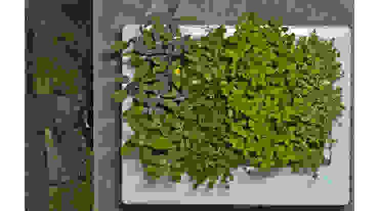 Florama - żywy obraz z roślinnością od FLORABO2 Klasyczny
