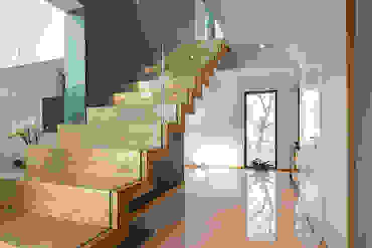 Nowoczesne schody dywanowe wykonane z dębu. Hardcube Project Factory od Project Factory Nowoczesny