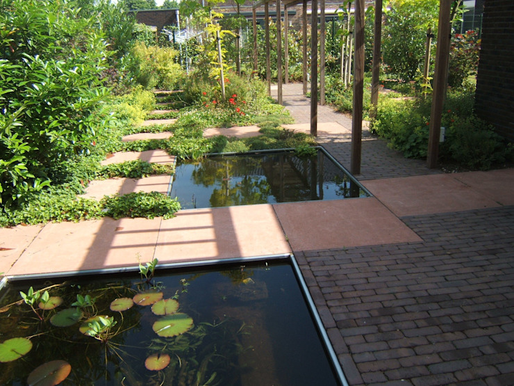 Lange tuin Moderne tuinen van Bladgoud-tuinen Modern