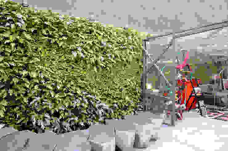 Quadro Vivo Urban Garden Roof & Vertical Kantor & Toko Modern