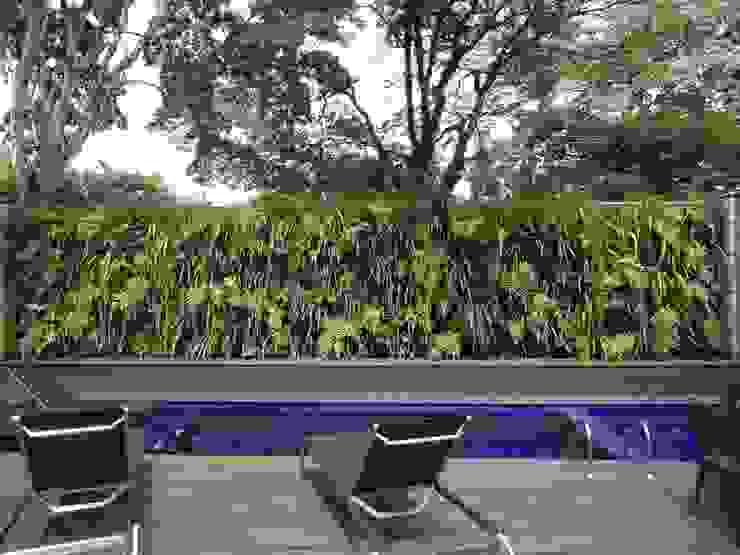 Quadro Vivo Urban Garden Roof & Vertical Kolam Renang Tropis
