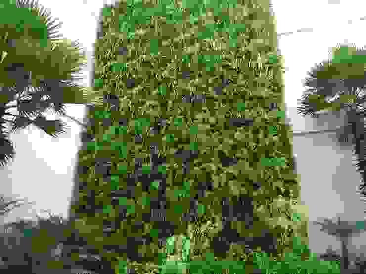 Quadro Vivo Urban Garden Roof & Vertical Kantor & Toko Tropis