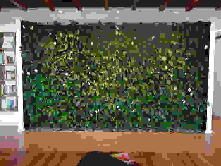 Projetos Diversos: Salas multimídia  por Quadro Vivo Urban Garden Roof & Vertical