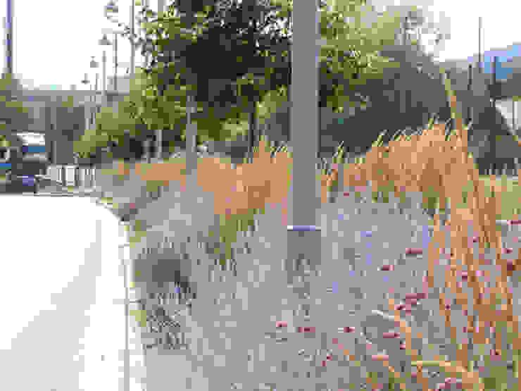 matiteverdi Jardin moderne