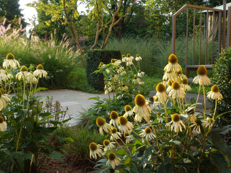 Giardino di casa privata – Bagnolo Mella (Bs) – anno 2013 Giardino moderno di matiteverdi Moderno
