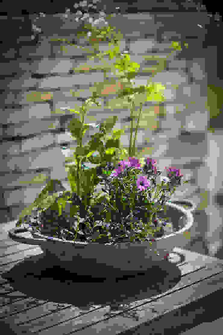 Bibury Tabletop Planter de Garden Trading Rústico