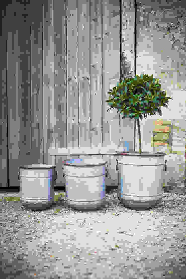 Set of 3 Malmesbury Planters de Garden Trading Rústico
