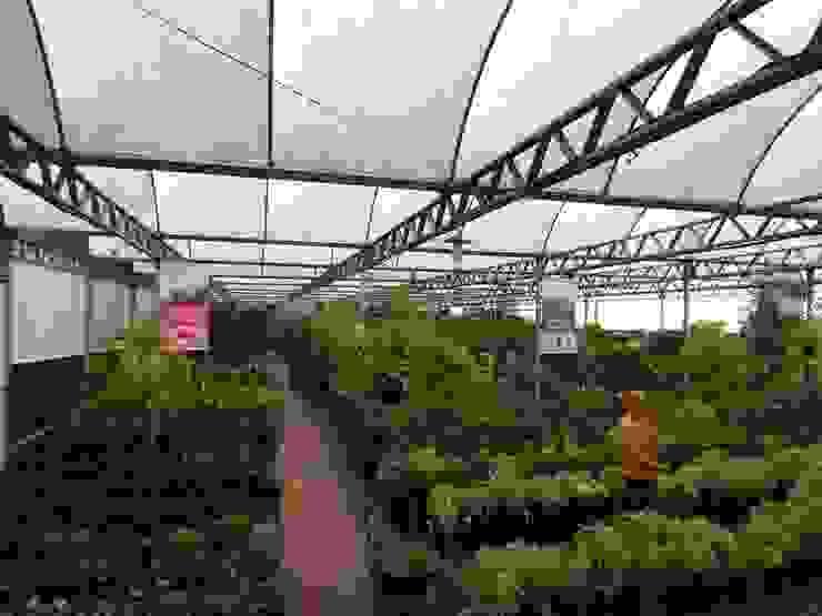 Setor de Plantas Internas Espaços comerciais clássicos por Blumengarten Plantas e Flores LTDA Clássico