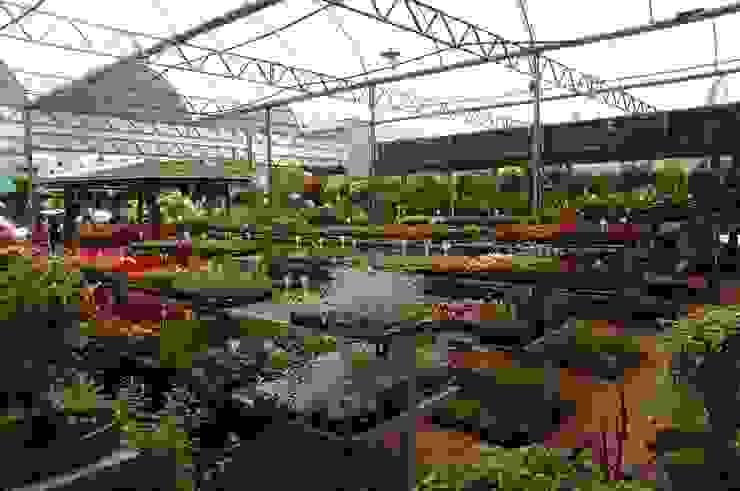 Setor de Caixarias Espaços comerciais clássicos por Blumengarten Plantas e Flores LTDA Clássico