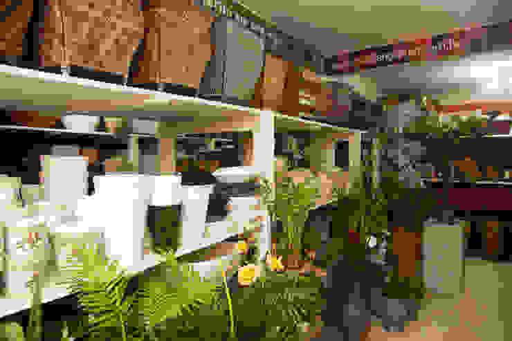 Setor de Cachepôs e acessórios Espaços comerciais clássicos por Blumengarten Plantas e Flores LTDA Clássico