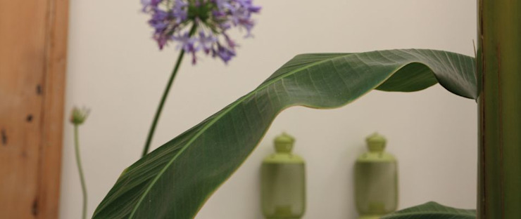 otragiardini Tropical style conservatory