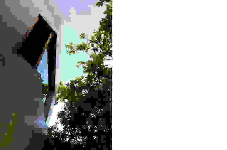 TACO Taller de Arquitectura Contextual Будинки