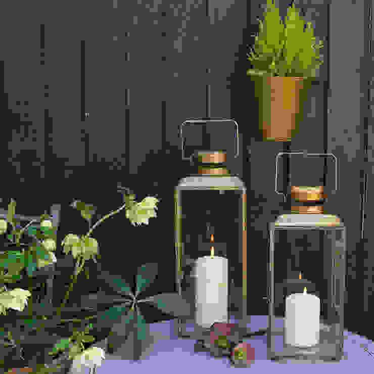 Sonia Paladini Garden Lighting