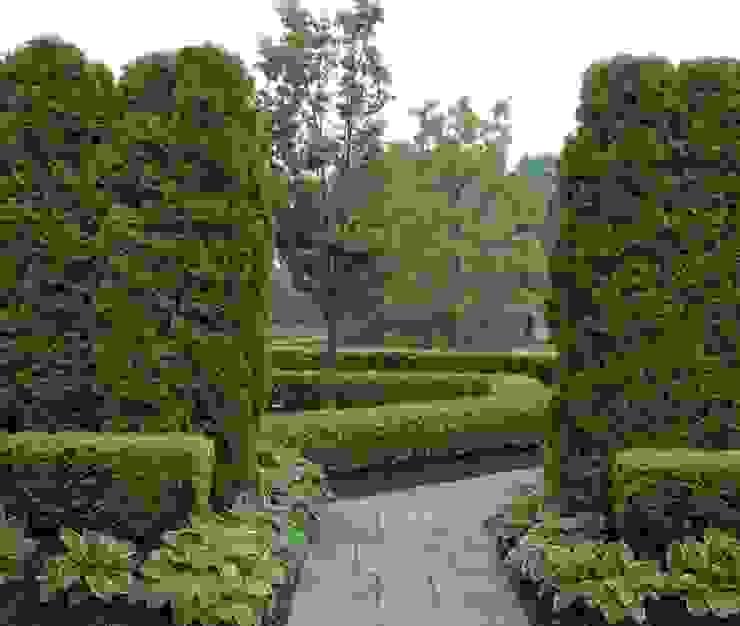 Сад в классическом стиле от homify Классический