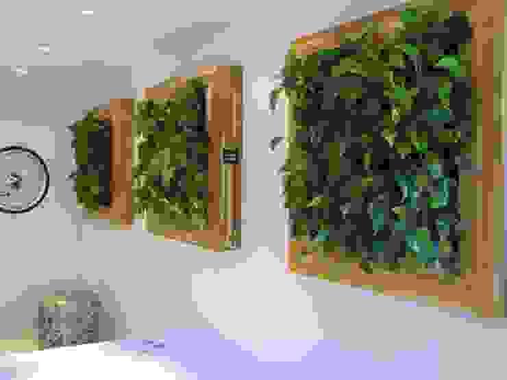 Quadro Vivo® por Quadro Vivo Urban Garden Roof & Vertical Eclético