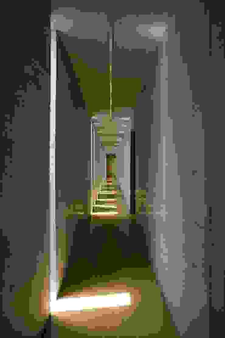 Slit House ミニマルスタイルの 温室 の EASTERN design office イースタン建築設計事務所 ミニマル
