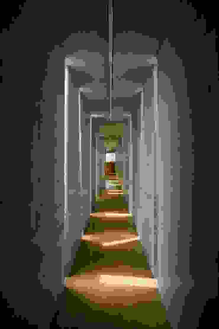 Slit House ミニマルスタイルの 玄関&廊下&階段 の EASTERN design office イースタン建築設計事務所 ミニマル