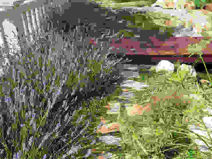 Jardins  por LANDSHAFT , Mediterrâneo
