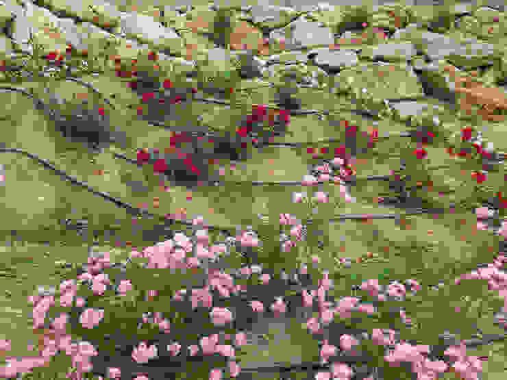 Rosaleda Jardines de estilo mediterráneo de LANDSHAFT Mediterráneo