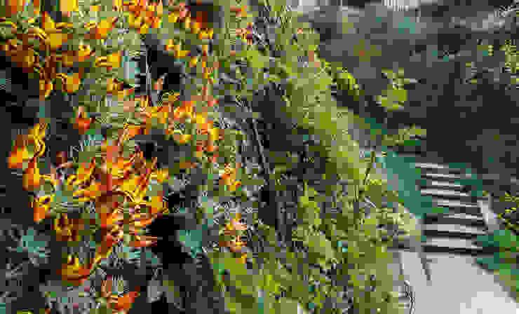 Vegetación para pendientes fuertes LANDSHAFT Jardines de estilo mediterráneo