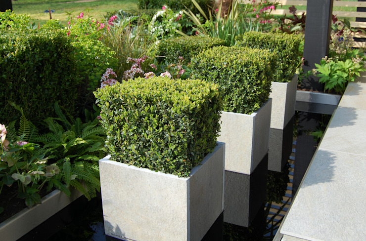 Office Box Modern garden by Robert Hughes Garden Design Modern