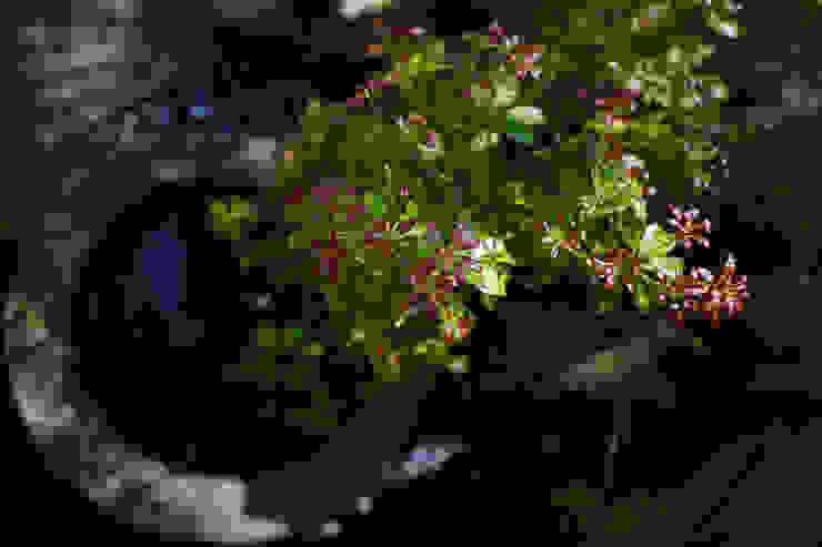 創作あふれる和の庭 2014~ オリジナルな 庭 の にわいろSTYLE オリジナル