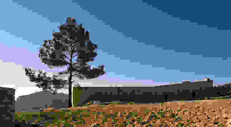 Casas campestres por Tomás Amat Estudio de Arquitectura Campestre
