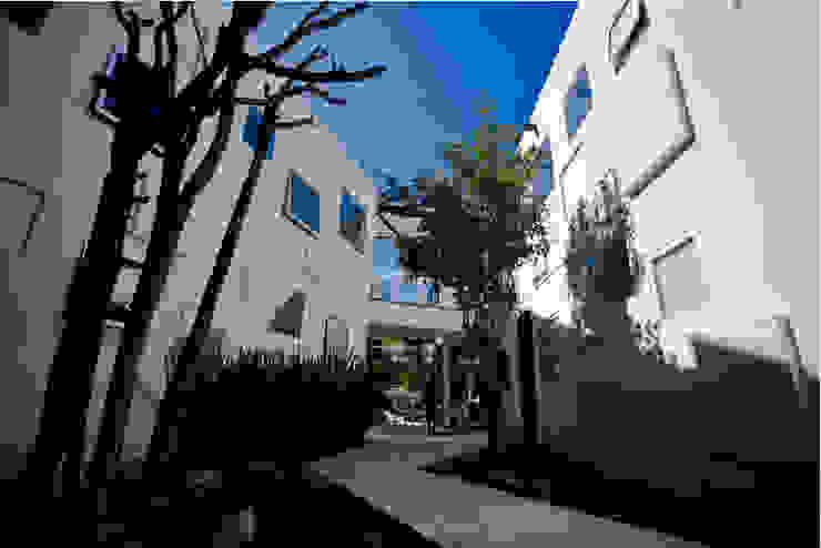 TREVOX Jardines modernos de Craft Arquitectos Moderno