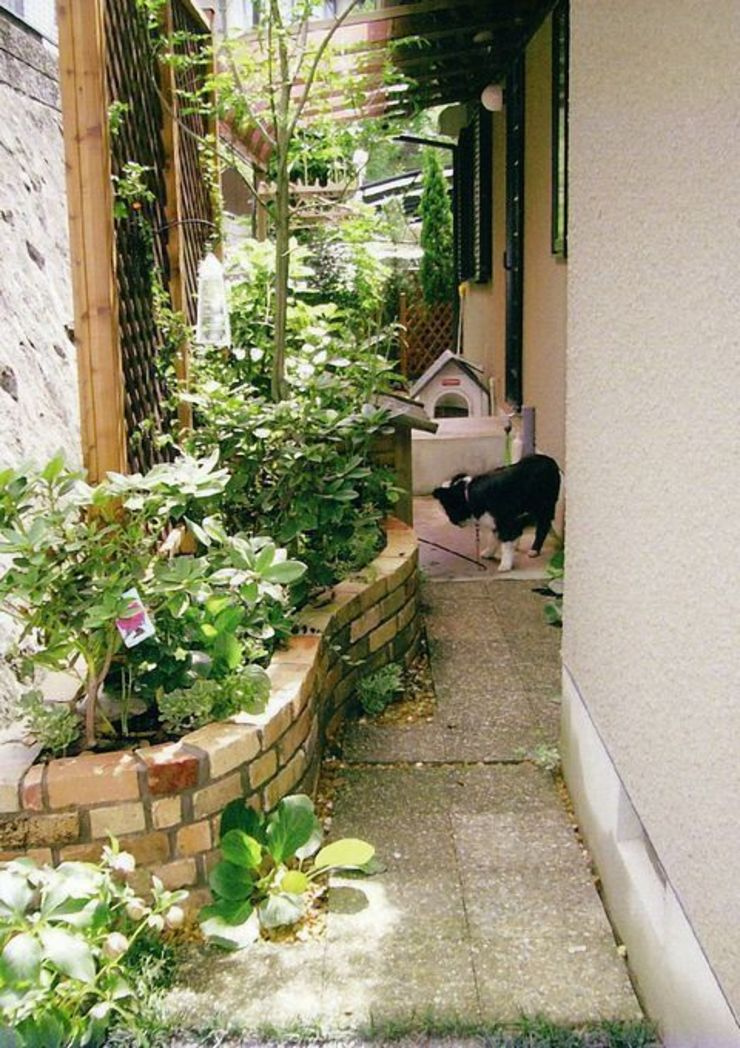 バックヤードの庭(浴室前) カントリーな 庭 の アーテック・にしかわ/アーテック一級建築士事務所 カントリー