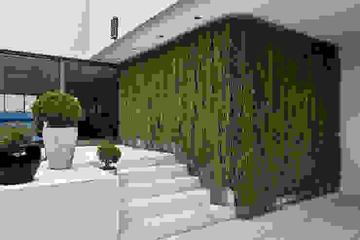 Cobertura Nova Lima - MG: Jardins  por CP Paisagismo