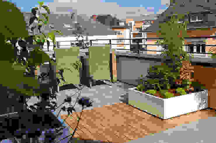 Petit jardin sur balcon Balcon, Veranda & Terrasse modernes par ATELIER SO GREEN Moderne