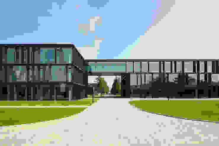 Philipp Mainzer Office for Architecture의  회사