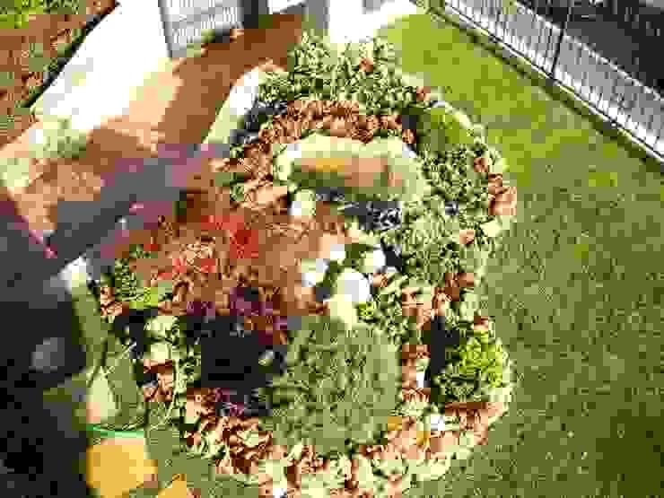 29 meravigliose idee per un giardino piccolo for Esempi di giardini