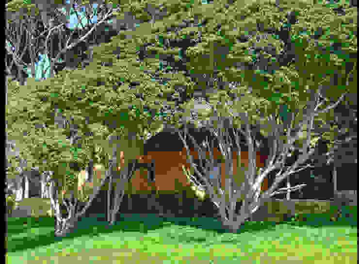 Casa Mis Amores Jardines tropicales de BR ARQUITECTOS Tropical