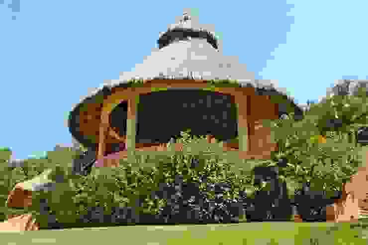 Tropical style garden by BR ARQUITECTOS Tropical