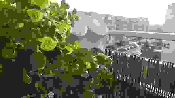 Pixel Garden na balkonie od Pixel Garden Klasyczny
