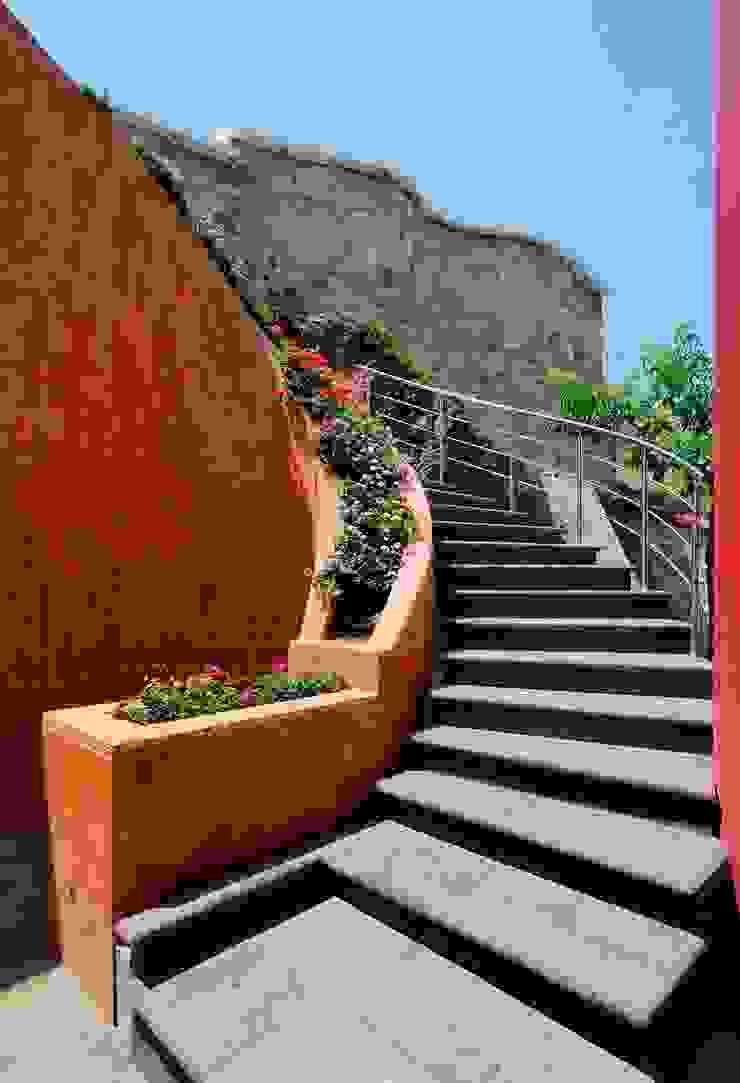 Excelencia en Diseño ห้องโถงทางเดินและบันไดสมัยใหม่