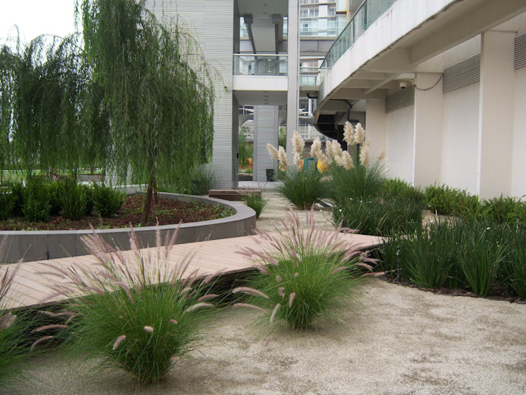 Pennisetums y lirios persas. Jardines modernos de KVR Arquitectura de paisaje Moderno