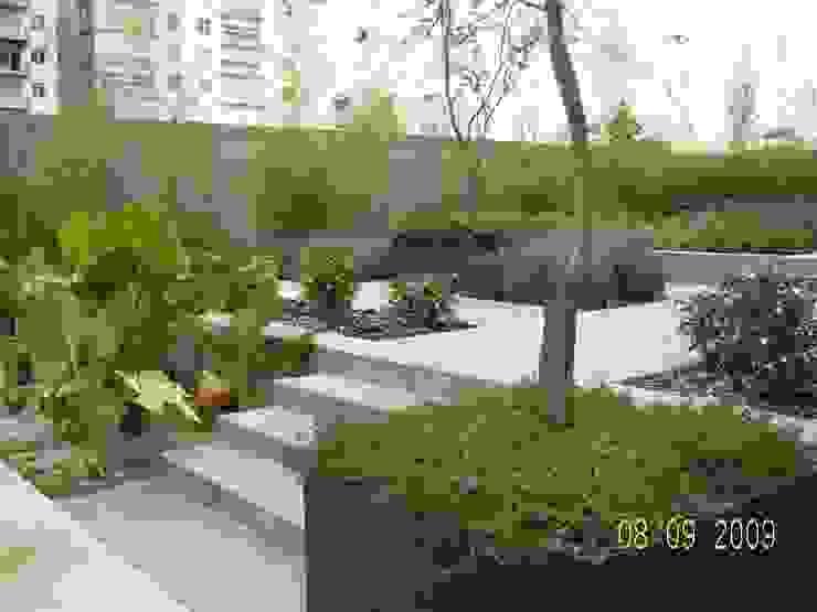 Parques Polanco Jardines modernos de KVR Arquitectura de paisaje Moderno