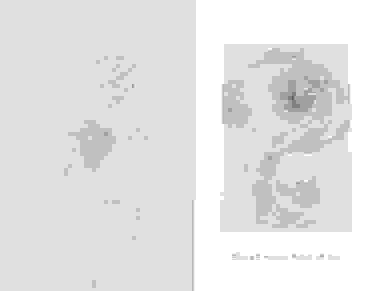 Breath of Traces-1,2, 165x119cm, korean paper on muk, 2013 by 흔적찾기 프로젝트