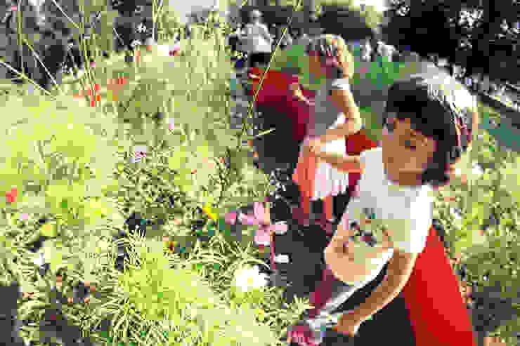 spazio gioco e di scoperta per tutti di GREENCURE - landscape & healing gardens Moderno
