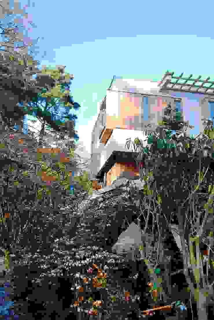 View up Giles Jollands Architect Modern Garden