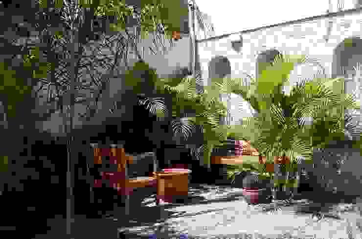 Giardino tropicale Giardino tropicale di italiagiardini Tropicale