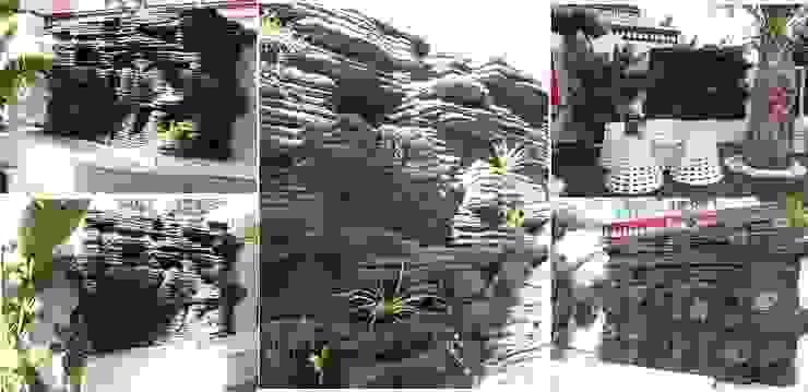 jardines verticales en patios Jardines de estilo tropical de ESTUDIO DELIER Tropical
