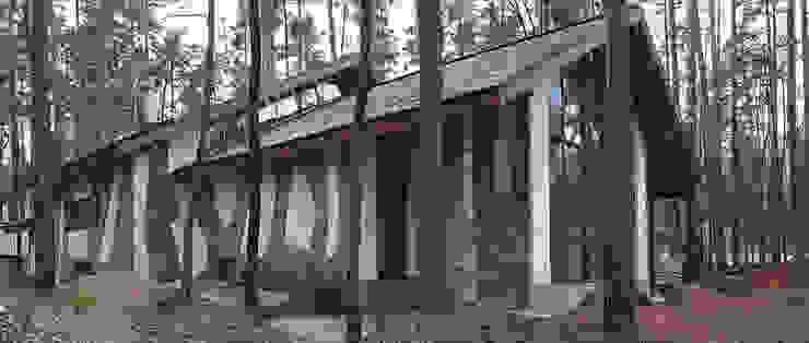 Охотничий дом от Remistudio Кантри