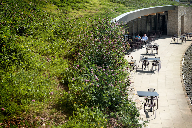 Gloucester Services Green Roof カントリーな商業空間 の Sky Garden Ltd カントリー