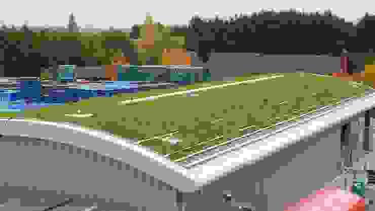 Kanes Foods Salad Factory Sky Garden Ltd Espacios comerciales de estilo rural