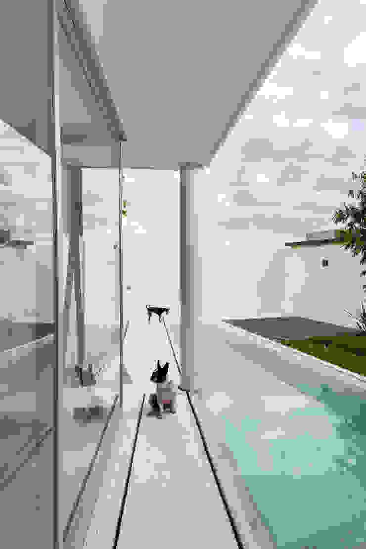 Ten House Albercas minimalistas de Taller ADC Architecture Office Minimalista